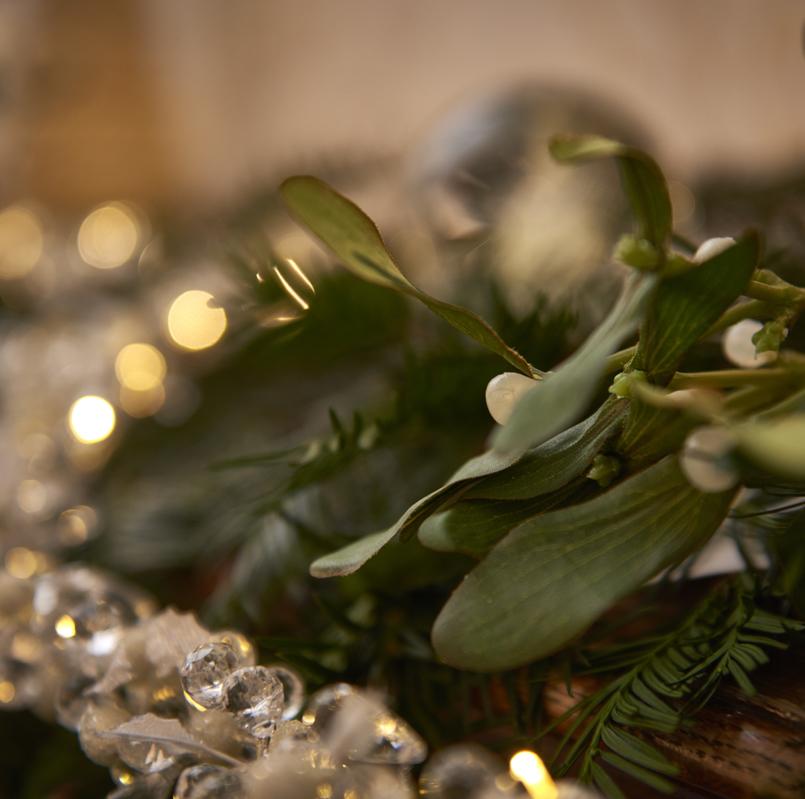 Christmas at Burnham Beeches
